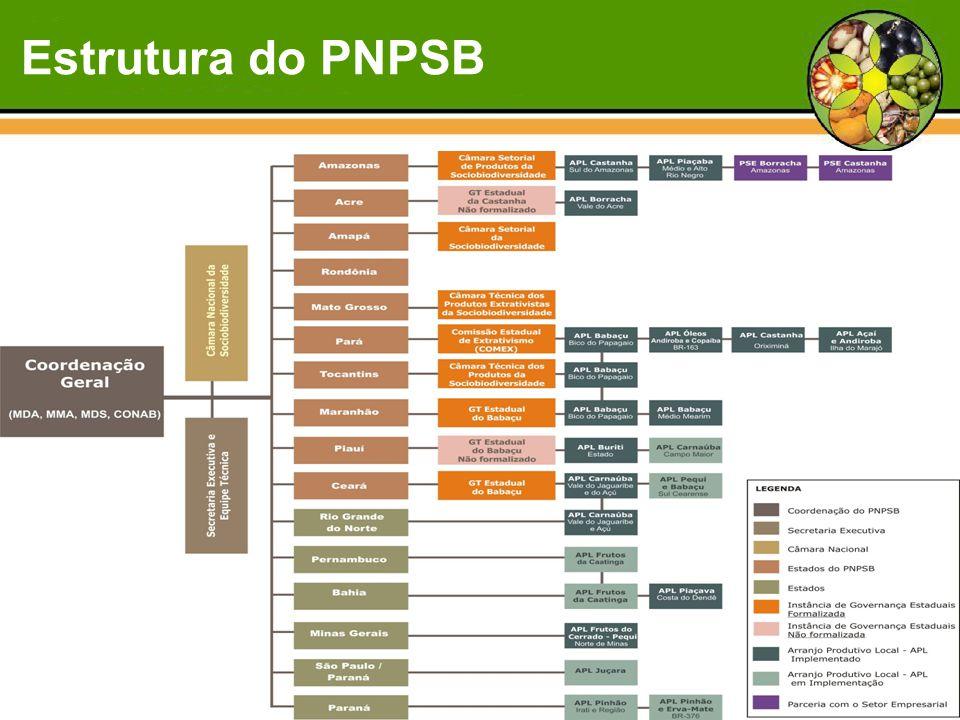 Estrutura do PNPSB