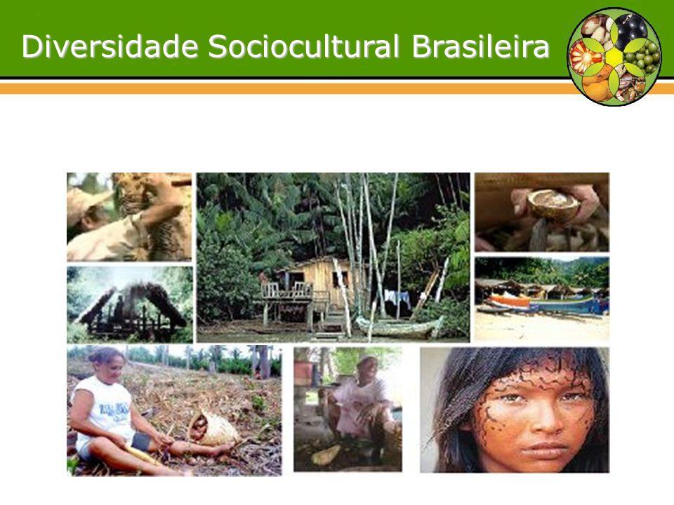 Diversidade Sociocultural Brasileira