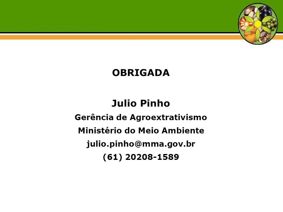 OBRIGADA Julio Pinho Gerência de Agroextrativismo Ministério do Meio Ambiente julio.pinho@mma.gov.br (61) 20208-1589