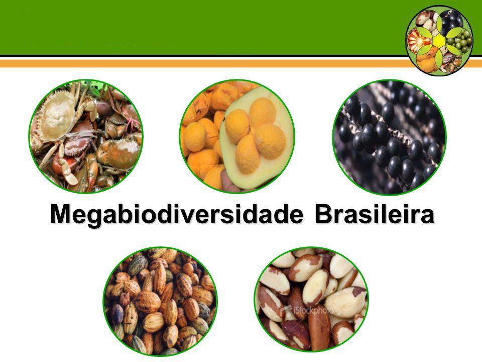 Megabiodiversidade Brasileira