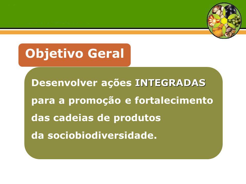 INTEGRADAS Desenvolver ações INTEGRADAS para a promoção e fortalecimento das cadeias de produtos da sociobiodiversidade. Objetivo Geral