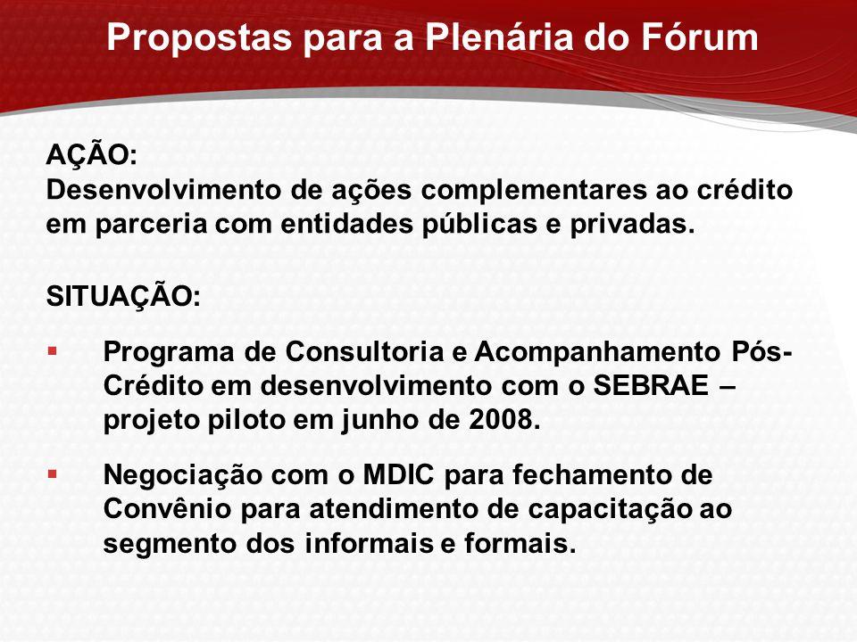 Propostas para a Plenária do Fórum SITUAÇÃO:  Programa de Consultoria e Acompanhamento Pós- Crédito em desenvolvimento com o SEBRAE – projeto piloto