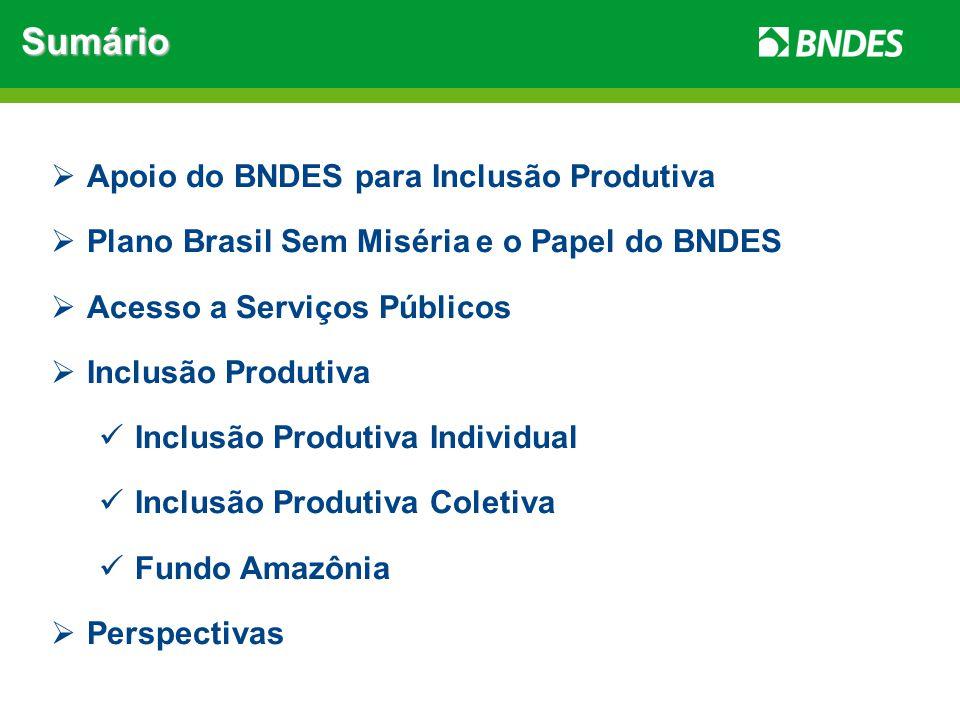 Apoio do BNDES para Inclusão Produtiva Atuação do BNDES até 2008a partir de 2008 Assistência SocialXInclusão Socioprodutiva Demandas infinitas Soluções pontuais e pouco abrangentes Existência de Programas Federais de assistência social (Ex.: Bolsa Família) Promove desenvolvimento regional no longo prazo Agrega valor a economia local Possibilita a distribuição de renda Incentiva o empreendedorismo