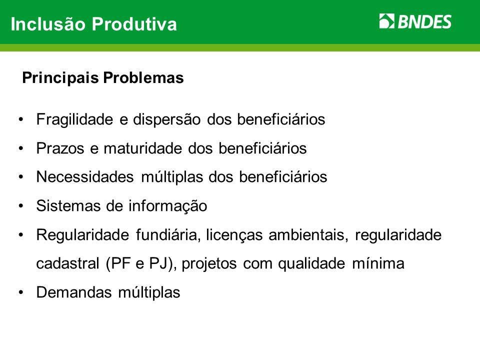 Inclusão Produtiva Individual  Inclusão Produtiva Individual  Programa BNDES de Microcrédito: Funding para instituições repassadoras de microcrédito produtivo orientado de 1º (TJLP + 1,5% a.a.) e 2º (TJLP) pisos.