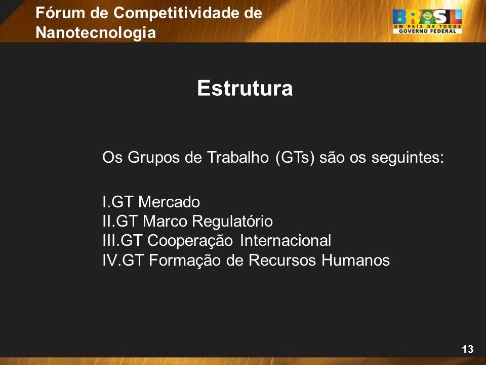 13 Os Grupos de Trabalho (GTs) são os seguintes: I.GT Mercado II.GT Marco Regulatório III.GT Cooperação Internacional IV.GT Formação de Recursos Humanos Estrutura Fórum de Competitividade de Nanotecnologia