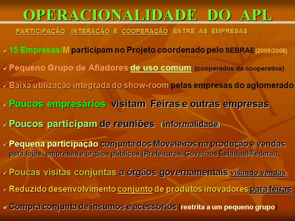 OPERACIONALIDADE DO APL PARTICIPAÇÃO, INTERAÇÃO E COOPERAÇÃO ENTRE AS EMPRESAS PARTICIPAÇÃO, INTERAÇÃO E COOPERAÇÃO ENTRE AS EMPRESAS 15 Empresas/M pa