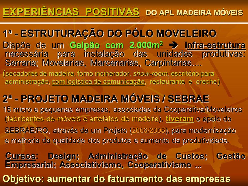 EXPERIÊNCIAS POSITIVAS DO APL MADEIRA MÓVEIS 1 ª - ESTRUTURAÇÃO DO PÓLO MOVELEIRO Dispõe de umGalpão com 2.000m 2  infra-estrutura necessária para in