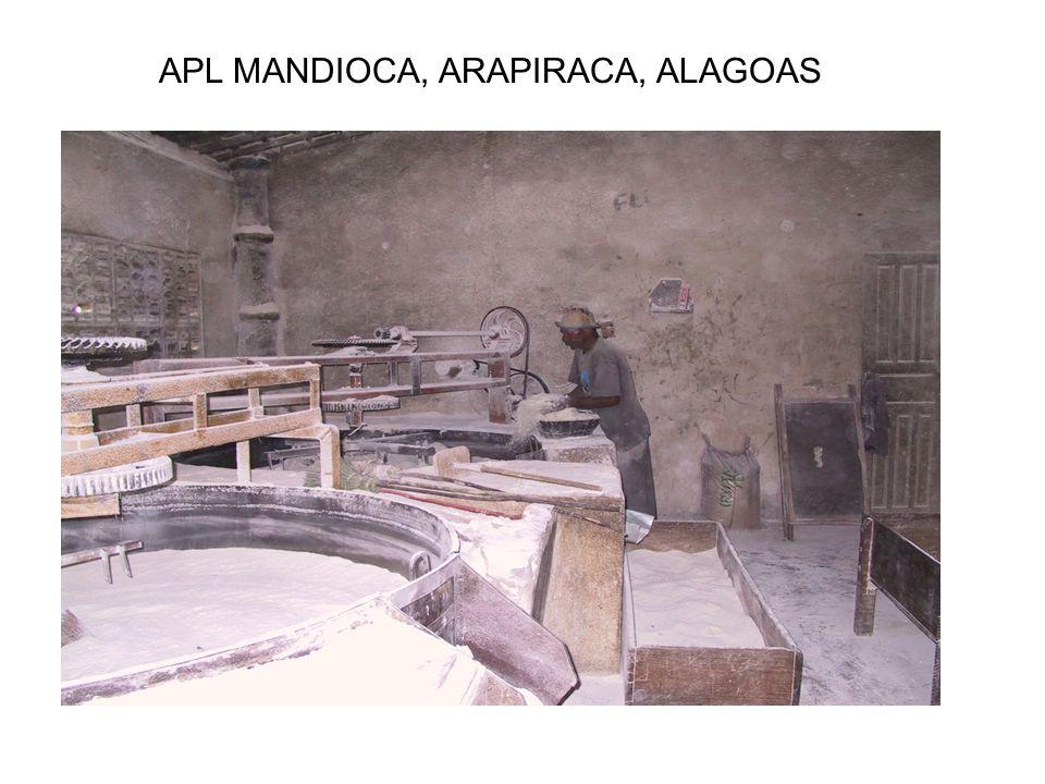 APL MANDIOCA, ARAPIRACA, ALAGOAS