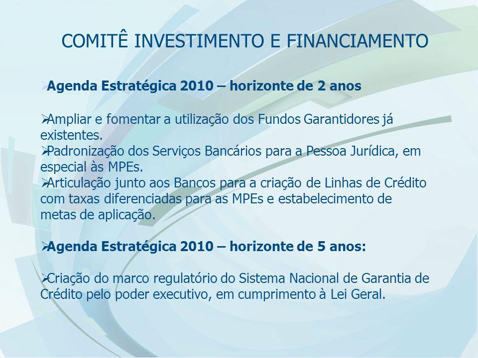  Agenda Estratégica 2010 – horizonte de 2 anos  Ampliar e fomentar a utilização dos Fundos Garantidores já existentes.