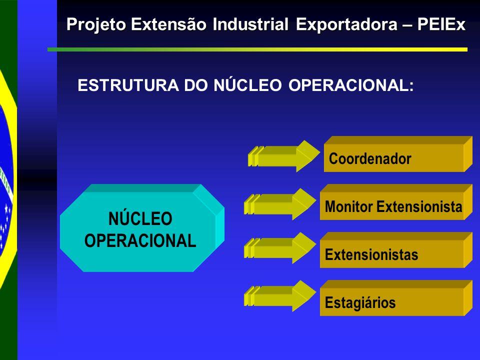 Projeto Extensão Industrial Exportadora – PEIEx ESTRUTURA DO NÚCLEO OPERACIONAL: Estagiários Extensionistas Monitor Extensionista Coordenador NÚCLEO OPERACIONAL