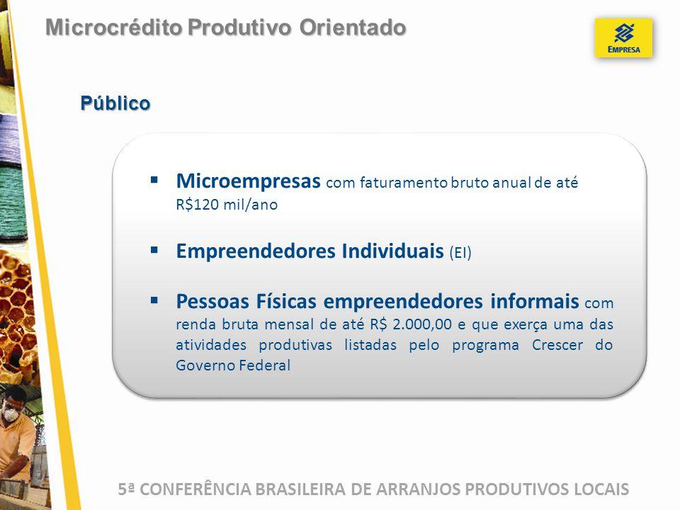 5ª CONFERÊNCIA BRASILEIRA DE ARRANJOS PRODUTIVOS LOCAIS  Microempresas com faturamento bruto anual de até R$120 mil/ano  Empreendedores Individuais (EI)  Pessoas Físicas empreendedores informais com renda bruta mensal de até R$ 2.000,00 e que exerça uma das atividades produtivas listadas pelo programa Crescer do Governo Federal Microcrédito Produtivo Orientado Público