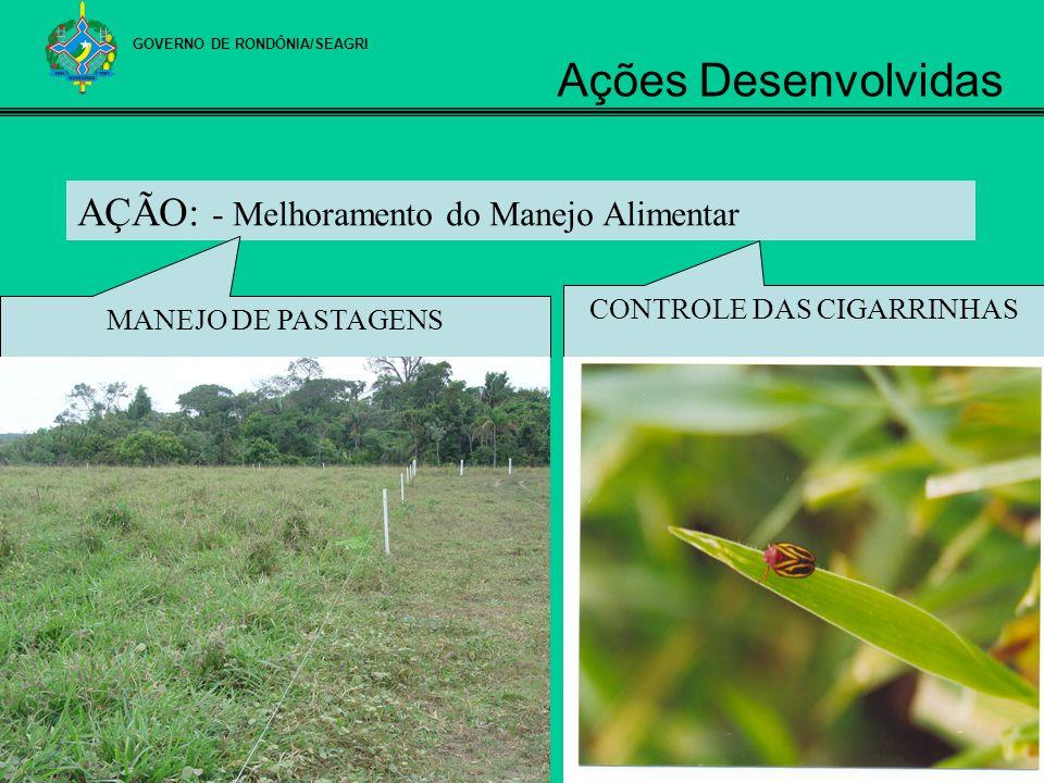 AÇÃO: - Melhoramento do Manejo Alimentar MANEJO DE PASTAGENS CONTROLE DAS CIGARRINHAS GOVERNO DE RONDÔNIA/SEAGRI Ações Desenvolvidas