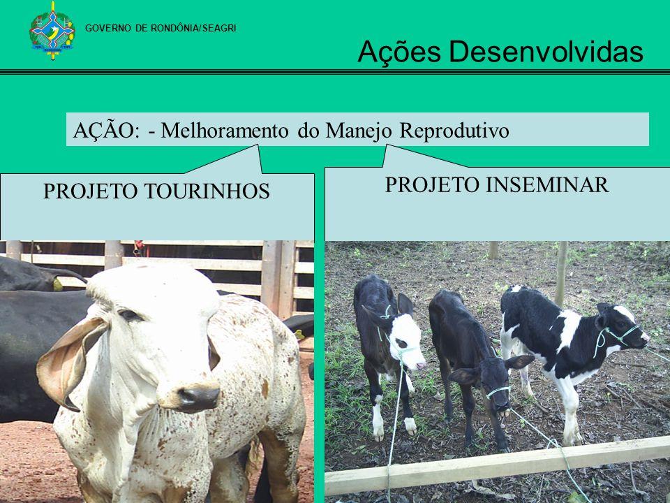 AÇÃO: - Melhoramento do Manejo Reprodutivo PROJETO INSEMINAR PROJETO TOURINHOS GOVERNO DE RONDÔNIA/SEAGRI Ações Desenvolvidas