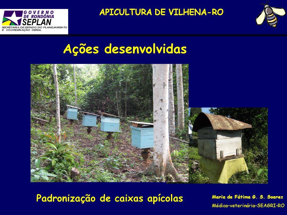 APICULTURA DE VILHENA-RO Maria de Fátima G. S. Soares Médica-veterinária-SEAGRI-RO Padronização de caixas apícolas Ações desenvolvidas