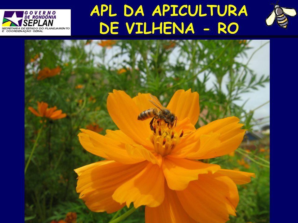 APICULTURA DE VILHENA-RO Parceiros SEPLAN BANCO DO BRASIL SEAGRI BANCO DA AMAZÔNIA SEDAM FIERO SEDES COOAPA SEBRAE-RO AVA SENAR-RO APICOL MAPA/SFA-RO APICER EMATER-RO Prefeituras de Vilhena, Colorado d'Oeste e Cerejeiras