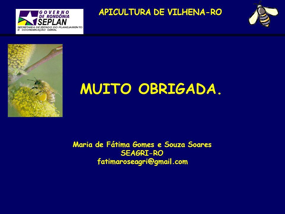 APICULTURA DE VILHENA-RO MUITO OBRIGADA. Maria de Fátima Gomes e Souza Soares SEAGRI-RO fatimaroseagri@gmail.com