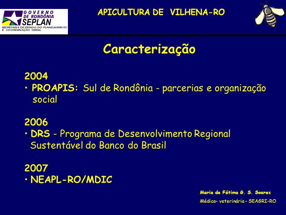 APICULTURA DE VILHENA-RO Maria de Fátima G. S. Soares Médica- veterinária - SEAGRI-RO 2004 PROAPIS: Sul de Rondônia - parcerias e organização social 2