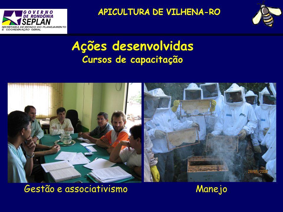 APICULTURA DE VILHENA Maria de Fátima G.S.