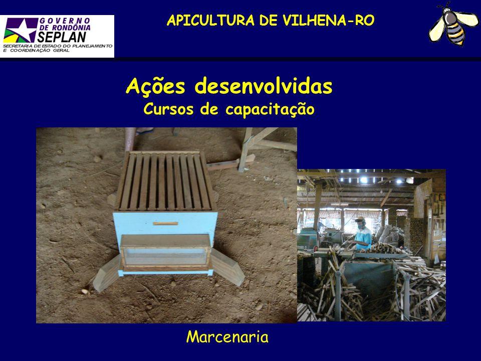 APICULTURA DE VILHENA-RO Ações desenvolvidas Cursos de capacitação Marcenaria