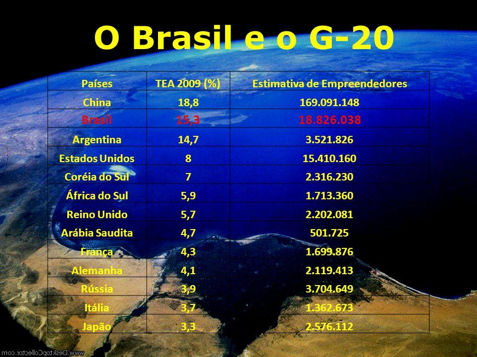 O Brasil e o G-20 PaísesTEA 2009 (%)Estimativa de Empreendedores China18,8169.091.148 Brasil15,318.826.038 Argentina14,73.521.826 Estados Unidos815.41