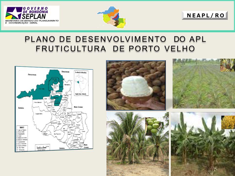 NEAPL/RO PLANO DE DESENVOLVIMENTO DO APL FRUTICULTURA DE PORTO VELHO