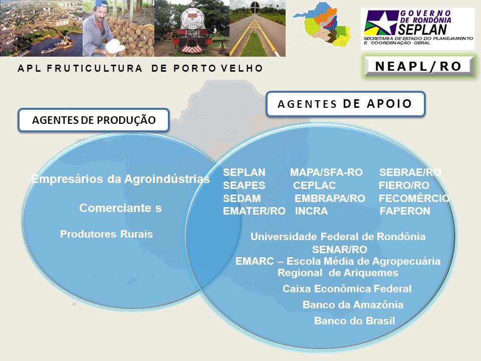 NEAPL/RONEAPL/RO AGENTES DE APOIO AGENTES DE PRODUÇÃO Produtores Rurais Empresários da Agroindústrias Comerciante s SEPLAN MAPA/SFA-RO SEBRAE/RO SEAPE