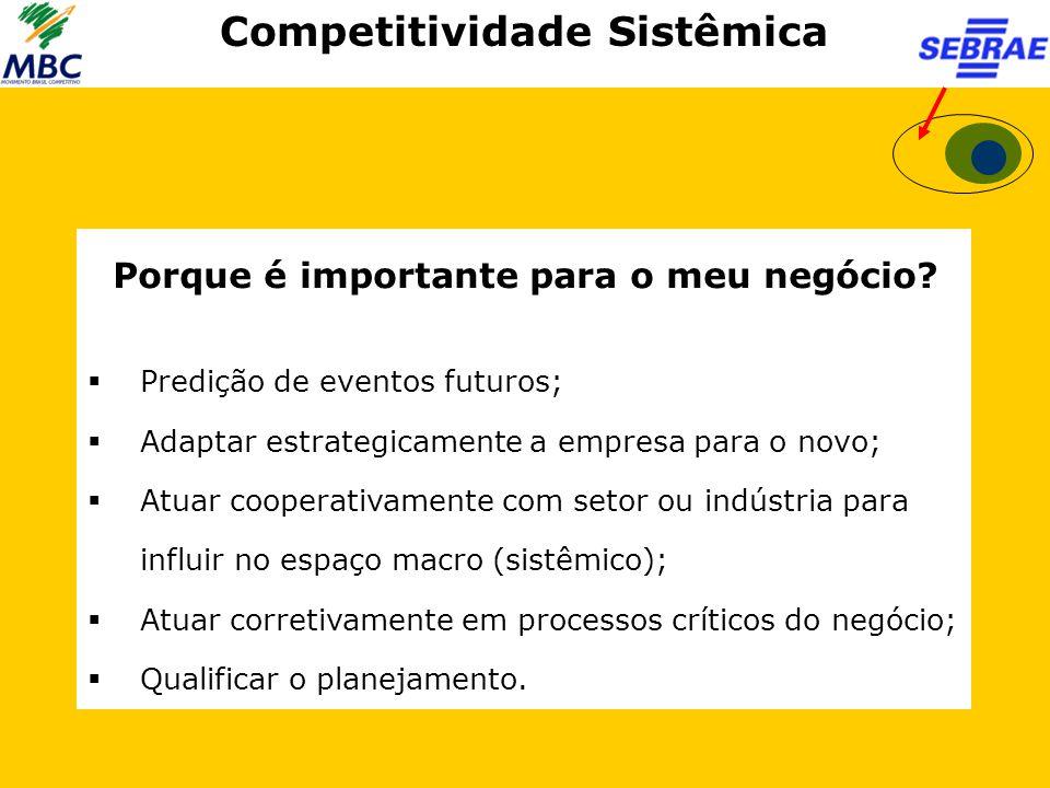 Competitividade Sistêmica Porque é importante para o meu negócio?  Predição de eventos futuros;  Adaptar estrategicamente a empresa para o novo;  A