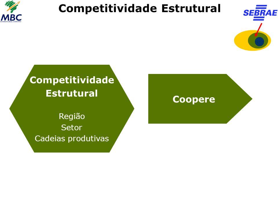 Competitividade Estrutural Competitividade Estrutural Região Setor Cadeias produtivas Coopere