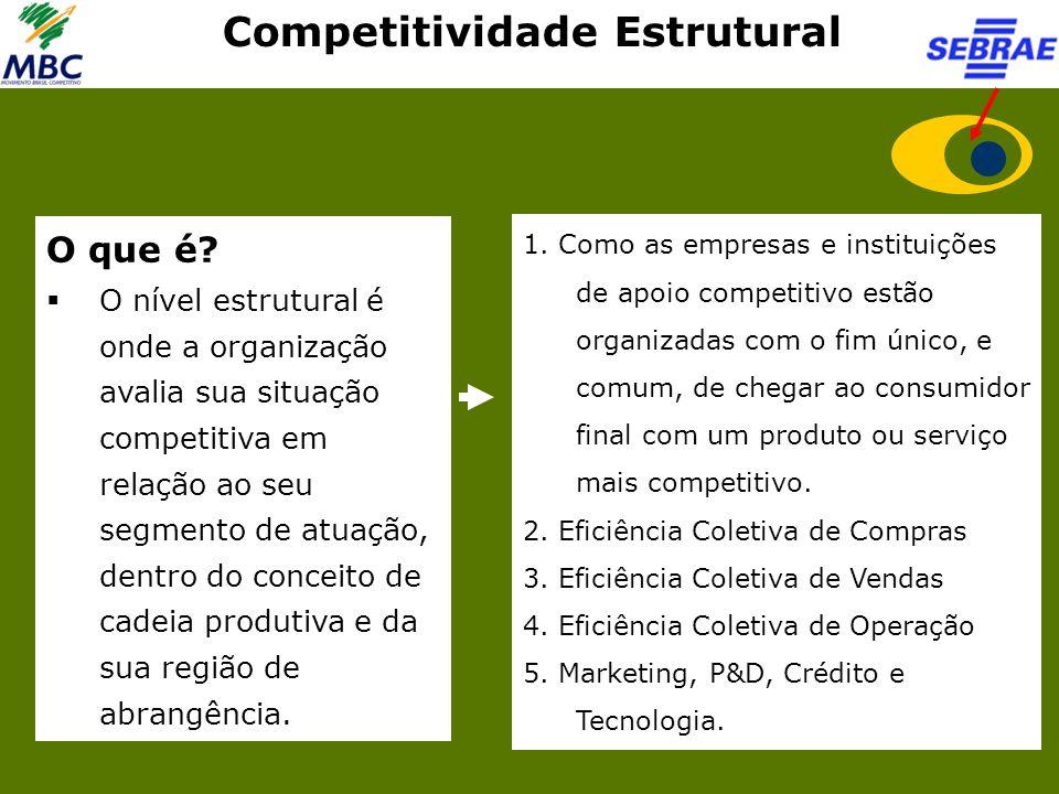 Competitividade Estrutural O que é?  O nível estrutural é onde a organização avalia sua situação competitiva em relação ao seu segmento de atuação, d