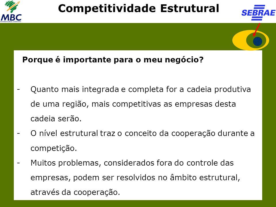 Competitividade Estrutural Porque é importante para o meu negócio? -Quanto mais integrada e completa for a cadeia produtiva de uma região, mais compet