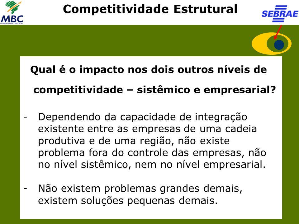 Competitividade Estrutural Qual é o impacto nos dois outros níveis de competitividade – sistêmico e empresarial? -Dependendo da capacidade de integraç