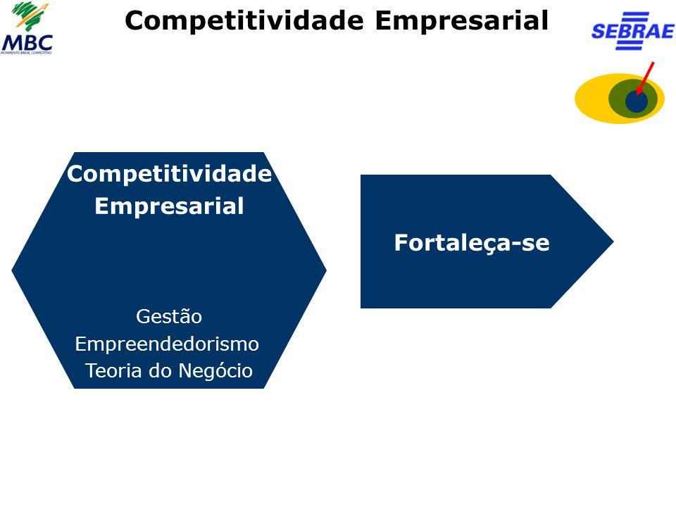 Competitividade Empresarial Competitividade Empresarial Gestão Empreendedorismo Teoria do Negócio Fortaleça-se