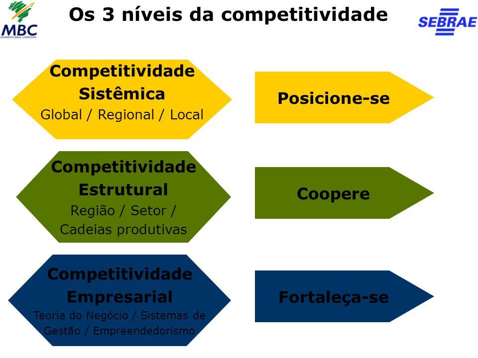 Os 3 níveis da competitividade Competitividade Sistêmica Global / Regional / Local Competitividade Estrutural Região / Setor / Cadeias produtivas Comp
