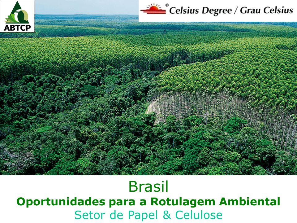 Brasil Oportunidades para a Rotulagem Ambiental Setor de Papel & Celulose
