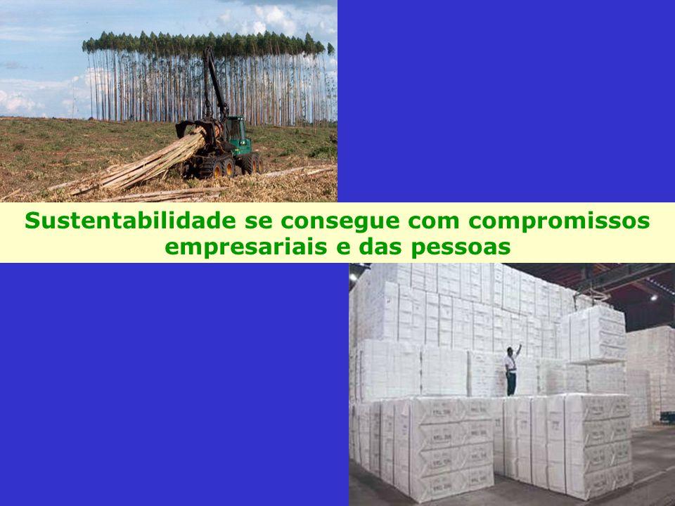 Sustentabilidade se consegue com compromissos empresariais e das pessoas