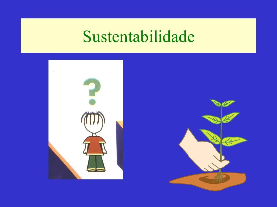 Sustentabilidade do Negócio Ser competitivo é ser melhor que a média dos concorrentes em todos os fatores chaves de competitividade do negócio em questão