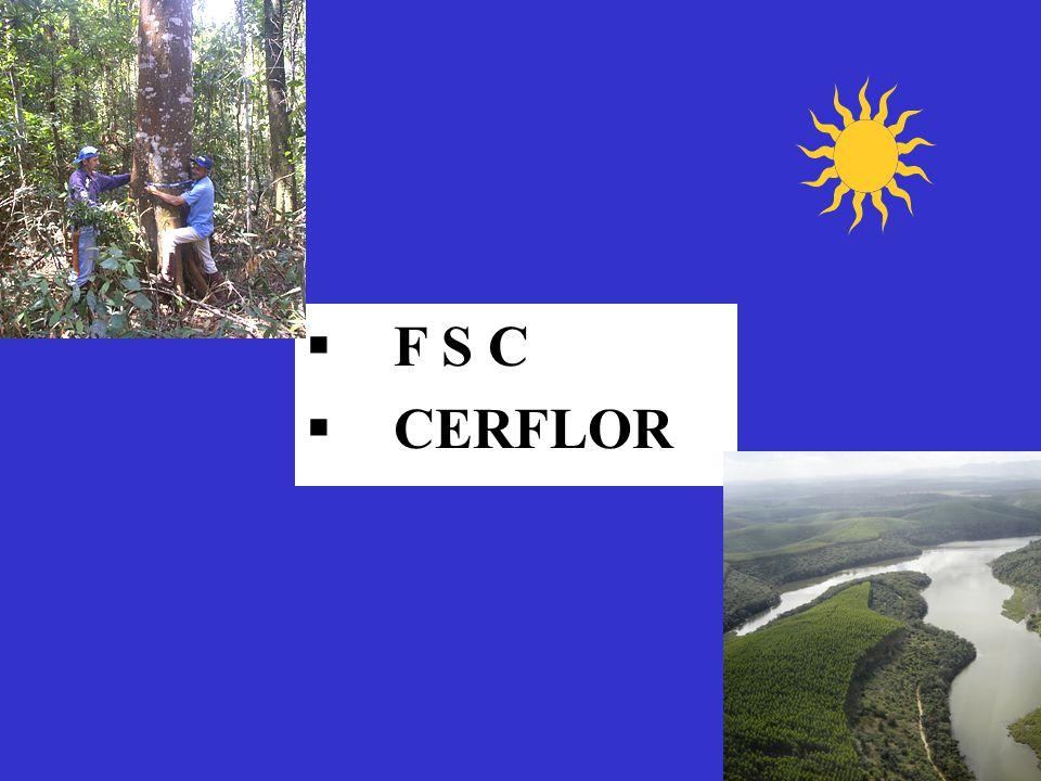 §F S C §CERFLOR