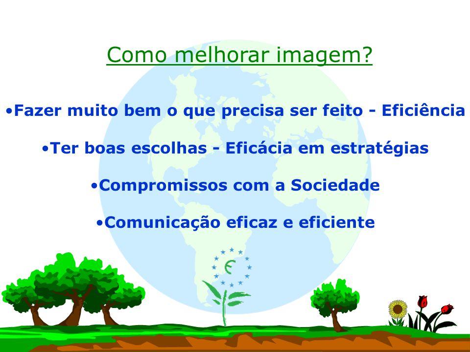 Fazer muito bem o que precisa ser feito - Eficiência Ter boas escolhas - Eficácia em estratégias Compromissos com a Sociedade Comunicação eficaz e efi