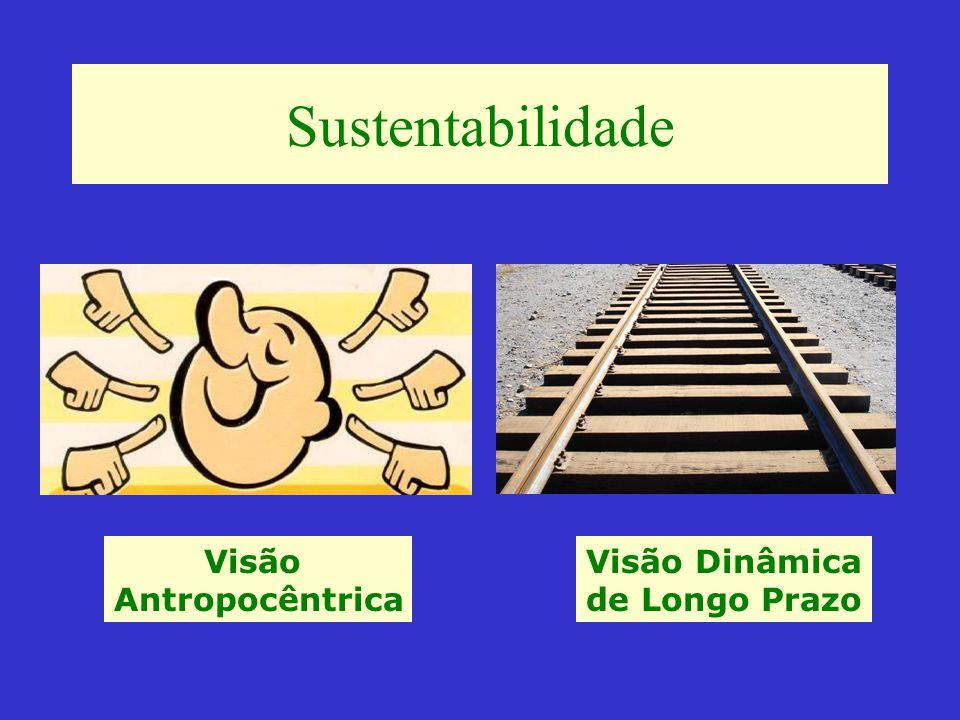 Sustentabilidade do Negócio - Fatores Chaves Custos Qualidade Logística Saúde financeira Saúde ambiental Imagem junto não apenas aos clientes, mas frente à Sociedade Matéria-prima disponível Escala de produção e market share