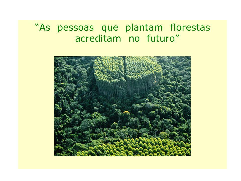 """""""As pessoas que plantam florestas acreditam no futuro"""""""