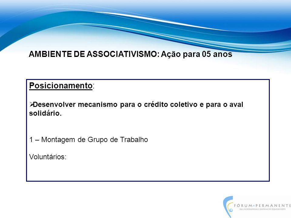 Posicionamento:  Desenvolver mecanismo para o crédito coletivo e para o aval solidário. 1 – Montagem de Grupo de Trabalho Voluntários: AMBIENTE DE AS