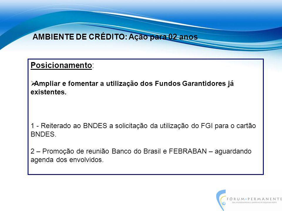 Posicionamento:  Ampliar e fomentar a utilização dos Fundos Garantidores já existentes. 1 - Reiterado ao BNDES a solicitação da utilização do FGI par