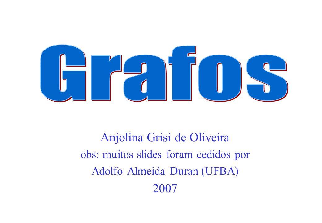 Anjolina Grisi de Oliveira obs: muitos slides foram cedidos por Adolfo Almeida Duran (UFBA) 2007