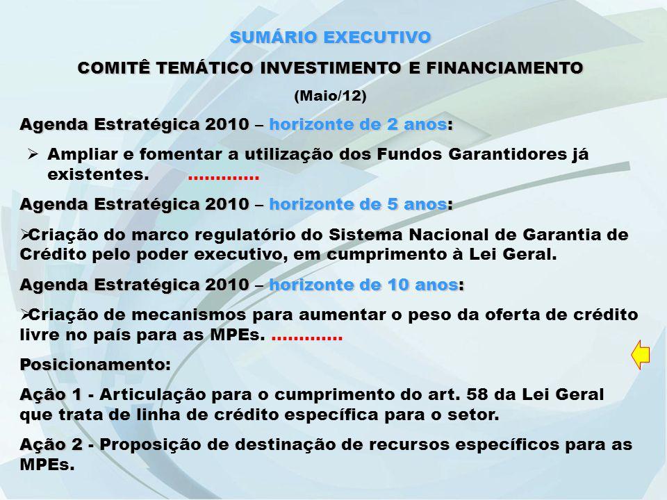 SUMÁRIO EXECUTIVO COMITÊ TEMÁTICO INVESTIMENTO E FINANCIAMENTO (Maio/12) Agenda Estratégica 2010 – horizonte de 2 anos:  Ampliar e fomentar a utilização dos Fundos Garantidores já existentes..............