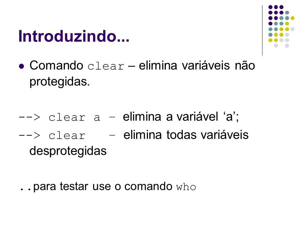 Introduzindo... Comando clear – elimina variáveis não protegidas. --> clear a – elimina a variável 'a'; --> clear – elimina todas variáveis desprotegi