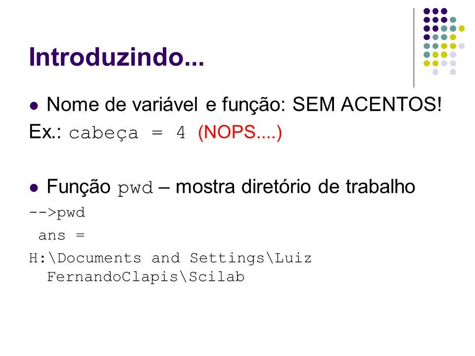 Introduzindo... Nome de variável e função: SEM ACENTOS! Ex.: cabeça = 4 (NOPS....) Função pwd – mostra diretório de trabalho -->pwd ans = H:\Documents