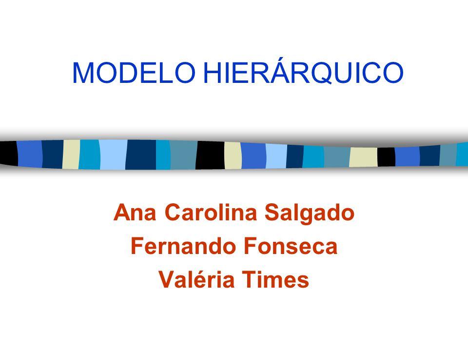 MODELO HIERÁRQUICO Ana Carolina Salgado Fernando Fonseca Valéria Times