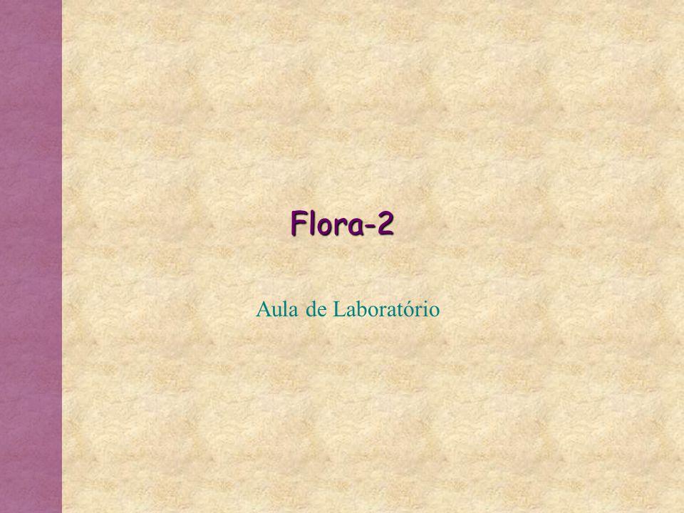 Flora-2 Aula de Laboratório