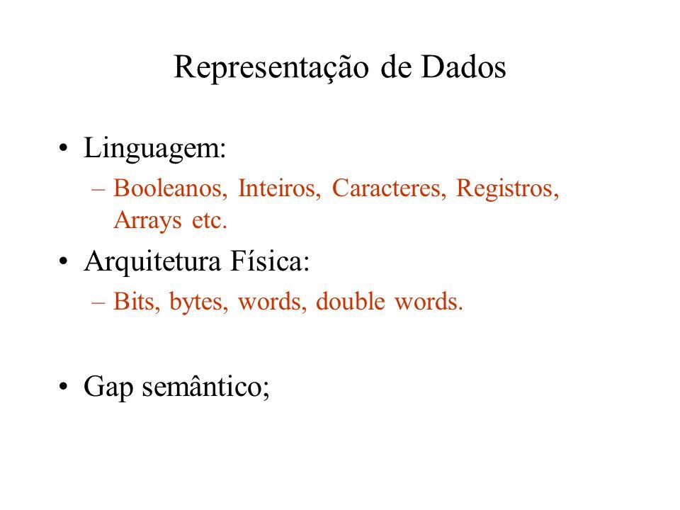 Representação de Dados Linguagem: –Booleanos, Inteiros, Caracteres, Registros, Arrays etc. Arquitetura Física: –Bits, bytes, words, double words. Gap