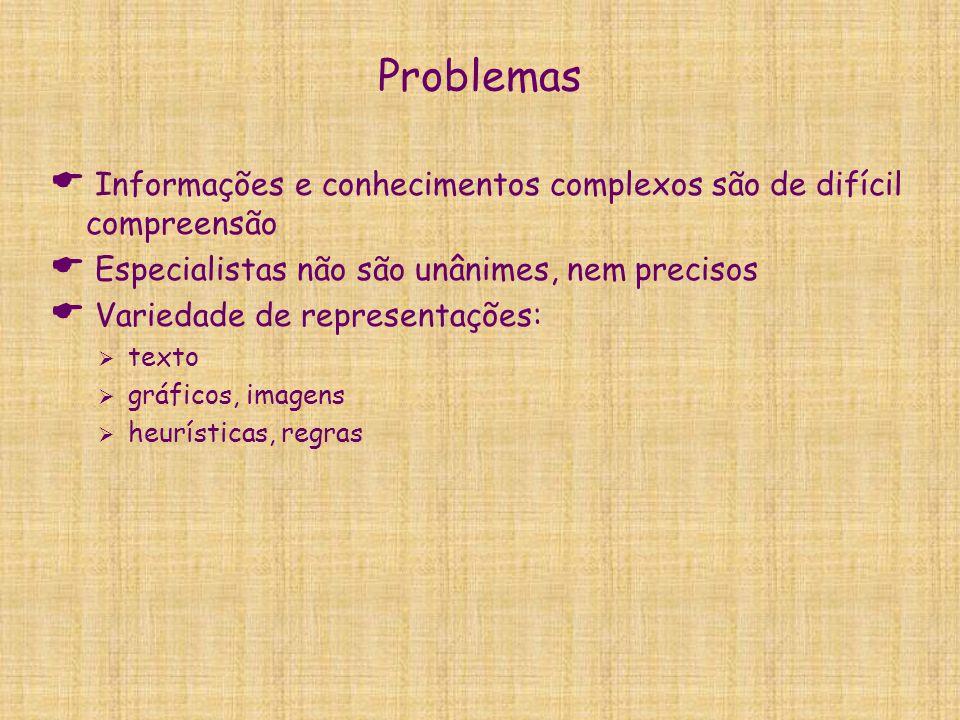 Problemas  Informações e conhecimentos complexos são de difícil compreensão  Especialistas não são unânimes, nem precisos  Variedade de representaç